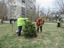 Продължава озеленяването във всички райони на Варна