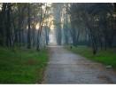 Кметът Иван Портних: Работим за създаване на музей на открито в Аспаруховия парк