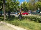 Продължава косенето на зелените площи във Варна