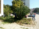 Над 1500 варненци се включиха в кампанията Да изчистим България заедно