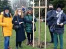 """100 дървета за """"Варна -100 години курортен град"""""""